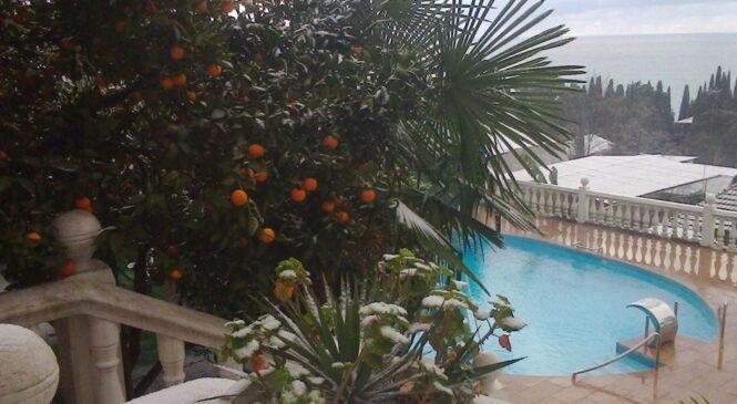 «Экскурсионный тур Мандариновый новый год» с размещением в отеле «Интер-Сухум» г. Сухум